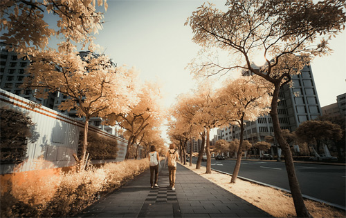 6-river-infrared-photography
