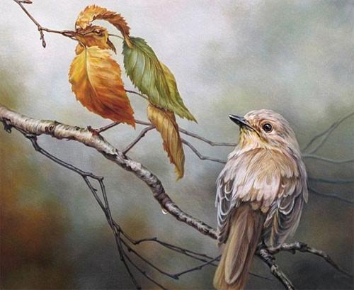 8-birds-illusion