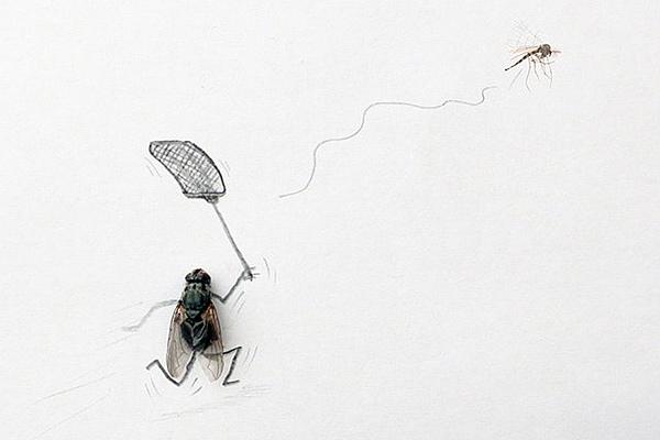 dead-flies-art-magnus-muhr-11