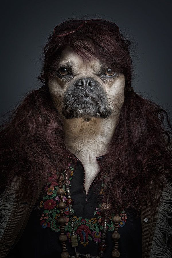 Underdogs-dogs-as-human-portraits-by-Sebastian-Magnani